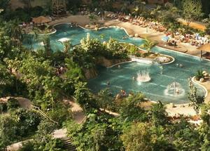 Тропический лес в аквапарке