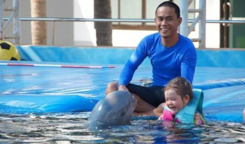 Ребенок купается с дельфином в дельфинарии в Хургаде Dolphin World