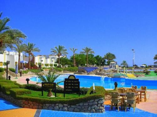 Бассейн отеля Gafy Resort 4* Наама бей