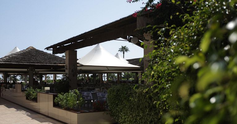 Adams Beach Hotel 5 Aya-Napa Bot 3