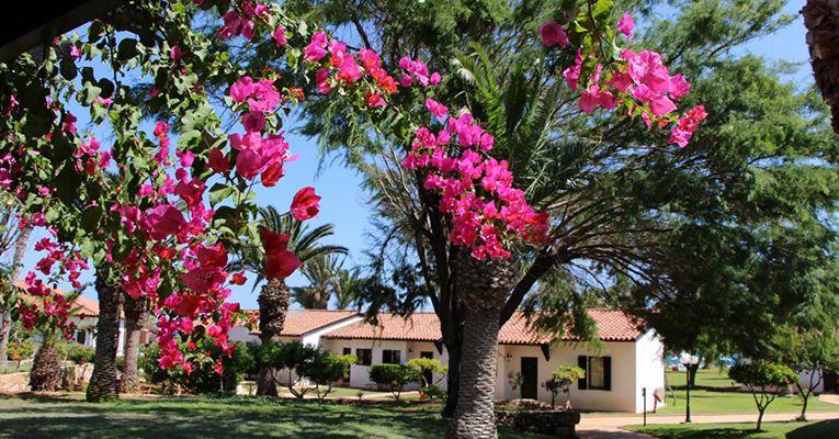 Kermia Beach Bungalow Hotel 4 Testimonial 1
