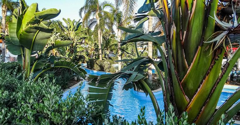 Olympic Lagoon Resort 4 Ayia Napa Testimonials 4