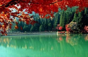 Куда лучше поехать отдыхать в октябре
